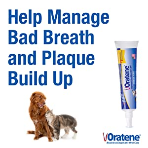 Patented Antimicrobial LP3 and MD2 Enzyme Systems to Help Manage Bad Breath and Plaque Build Up