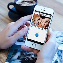 DOGNESS App