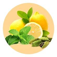 Peppermint, Lemon & Green Cardamom Oil