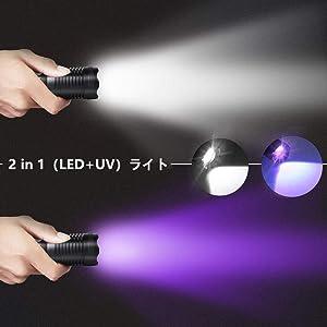 2-IN-1   LED   ブラックライト