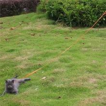 dog leash 6 feet,dog rope leash,leash for big dogs,long leash dog,toy dog leash,