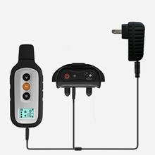 Dual charging