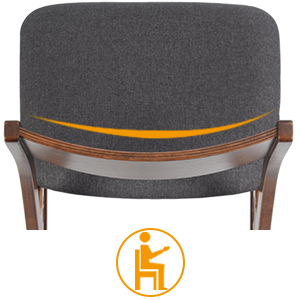 Ergonomic Chair Back