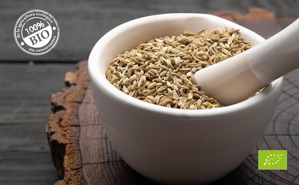 Biojoy Semillas de Anís orgánico (500 gr): Amazon.es: Alimentación ...