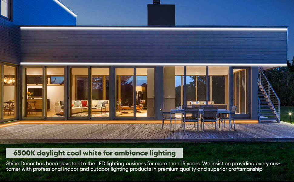 Shine Decor LED Neon Rope Lights 6500k daylight white