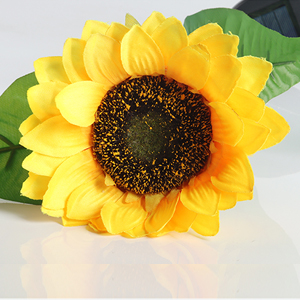 Solar Sunflower Lights