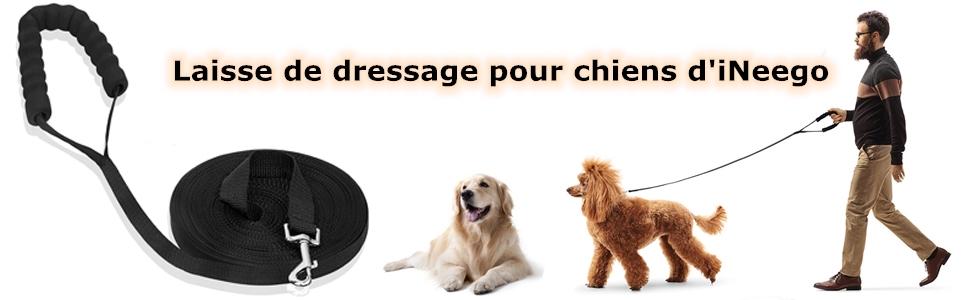 laisse de dressage pour chien