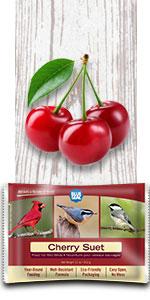 cherry bird suet