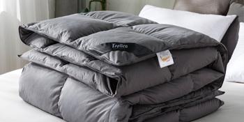 gray down comforter all season