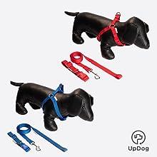 UPDOG Collar para Perro de Cuero Sintético Huesos. Diferentes ...