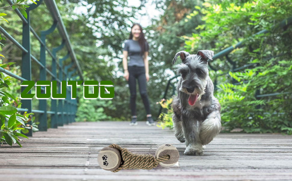 dog che rope toys