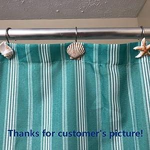seashell shower curtain hook 3