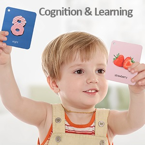 Cognition & Learing
