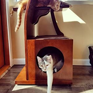 cat house cubby