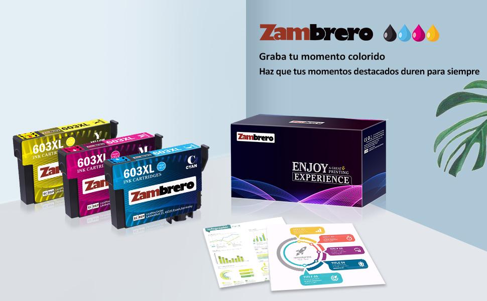 Zambrero 603 XL Reemplazo para Epson 603XL Cartuchos de Tinta