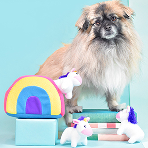 Studio shot of a small dog playing with the unicorn burrow toy