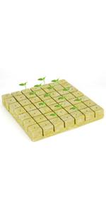 Rockwool Grow ( Click Here )