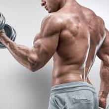 body gainer