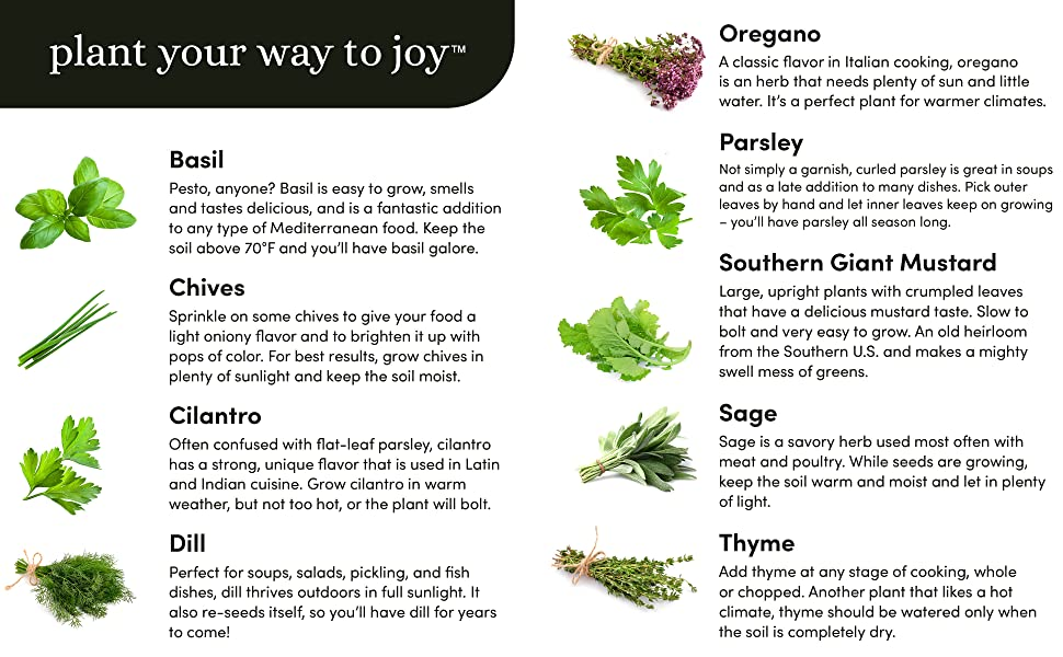 Plant your way to joy