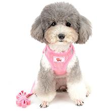 pink harness