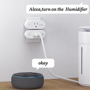 Gosund smart plug outlet