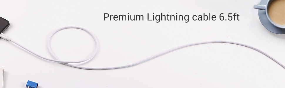 lightning cable 6ft