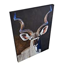 greater kudu canvas staging