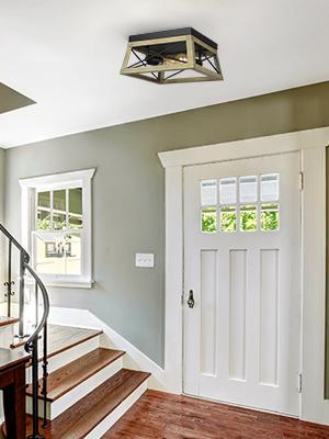 2 light ceiling light