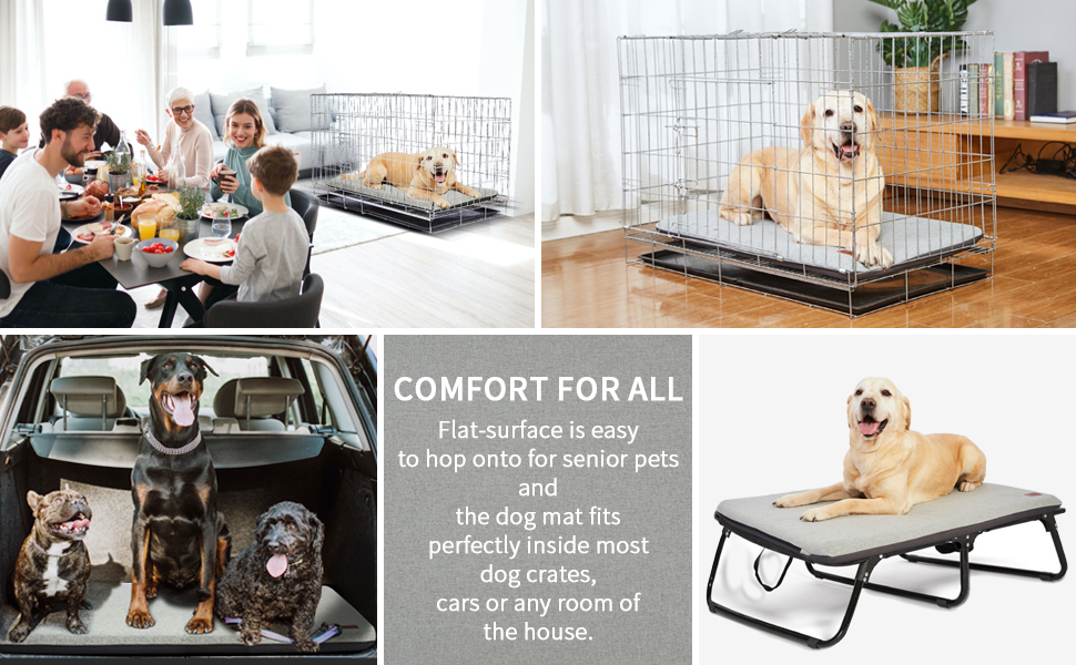 dog crate bed