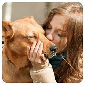 hemp calming dog stress anxiety supplement anxiety thunderstorms relief separation natural