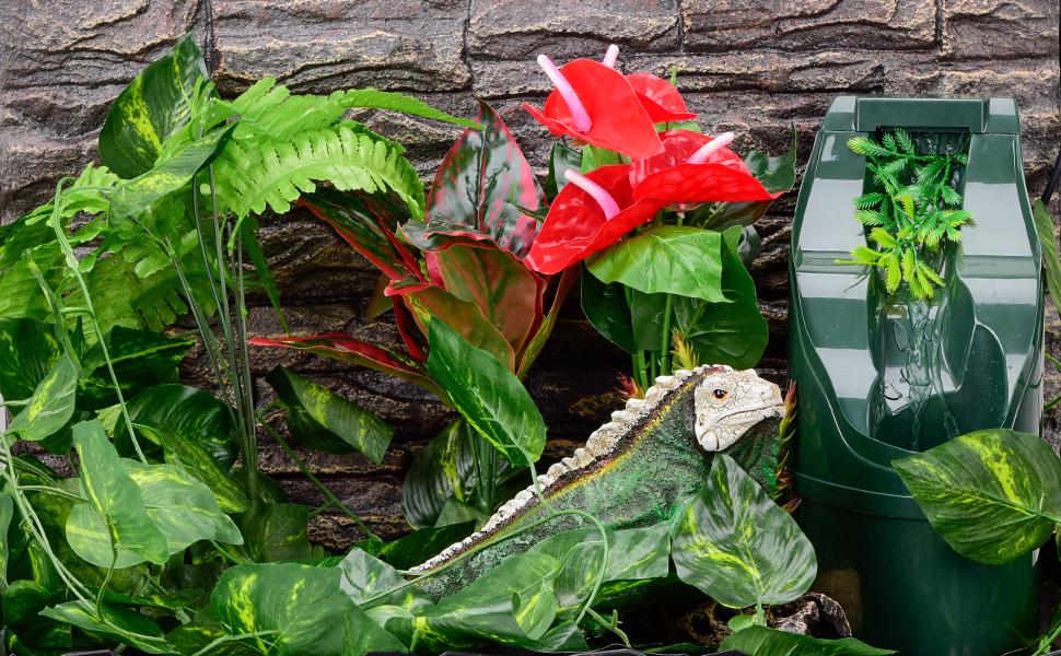 reptile water dispenser make pet happy