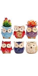 ROSE CREATE 6pcs 3.0 Inches Big Owl Planters