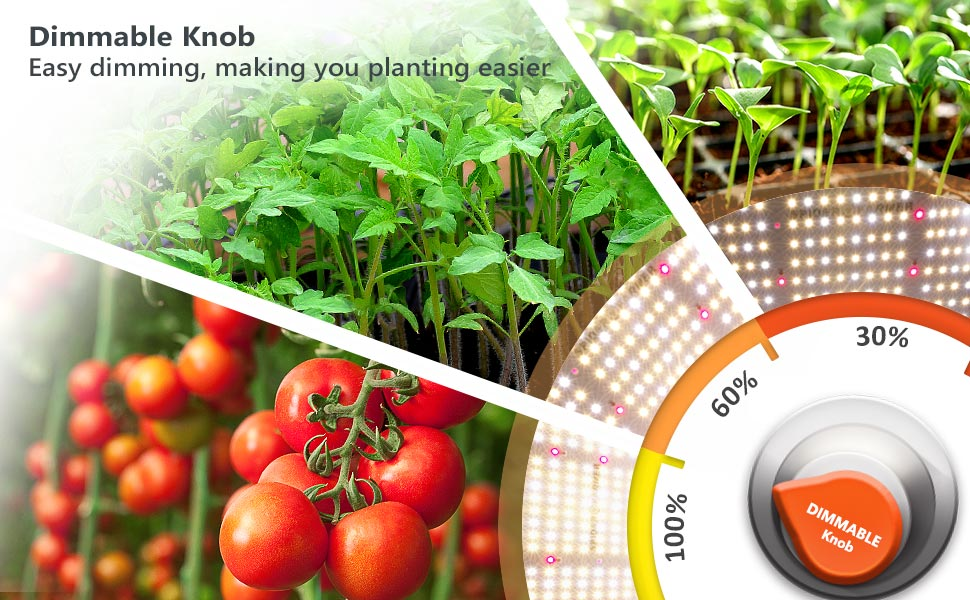 dimmable grow light for indoor plants