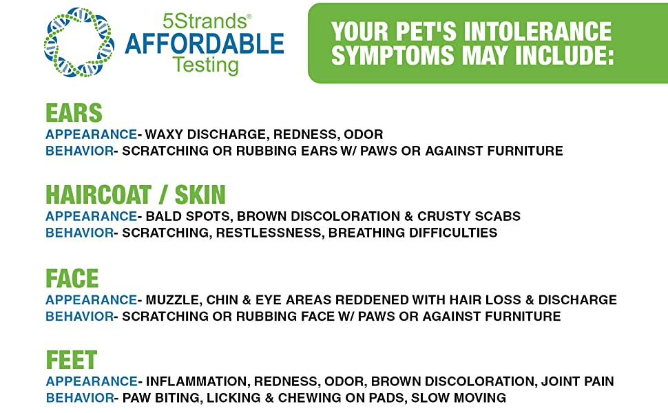 Allergy Food Pet Cat Dog Health Nutrition Raw Kibble Skin Rash Hot Spot Bath Toy Treat