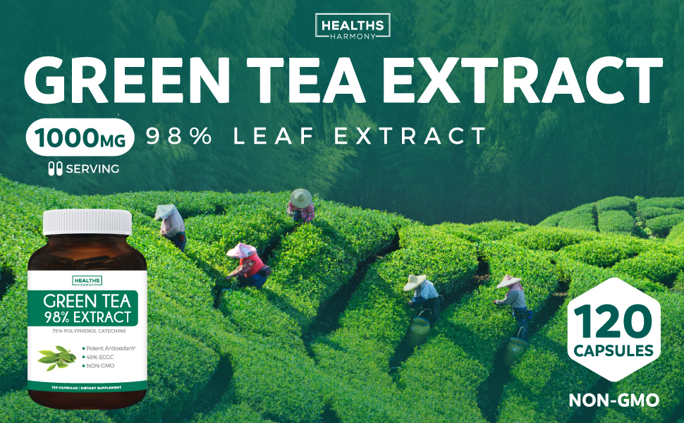 Green Tea Extract 98% - 1000mg Natural - Polyphenol Catechins - Antioxidant Supplement