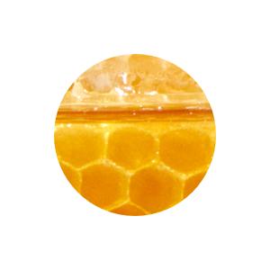 honey cream wash oil cleanser lotion