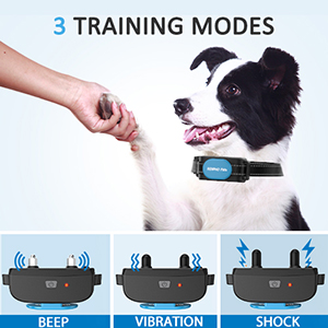 training collar for dogs large breed