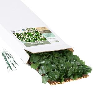 Faux Silk Ivy Trellis Box