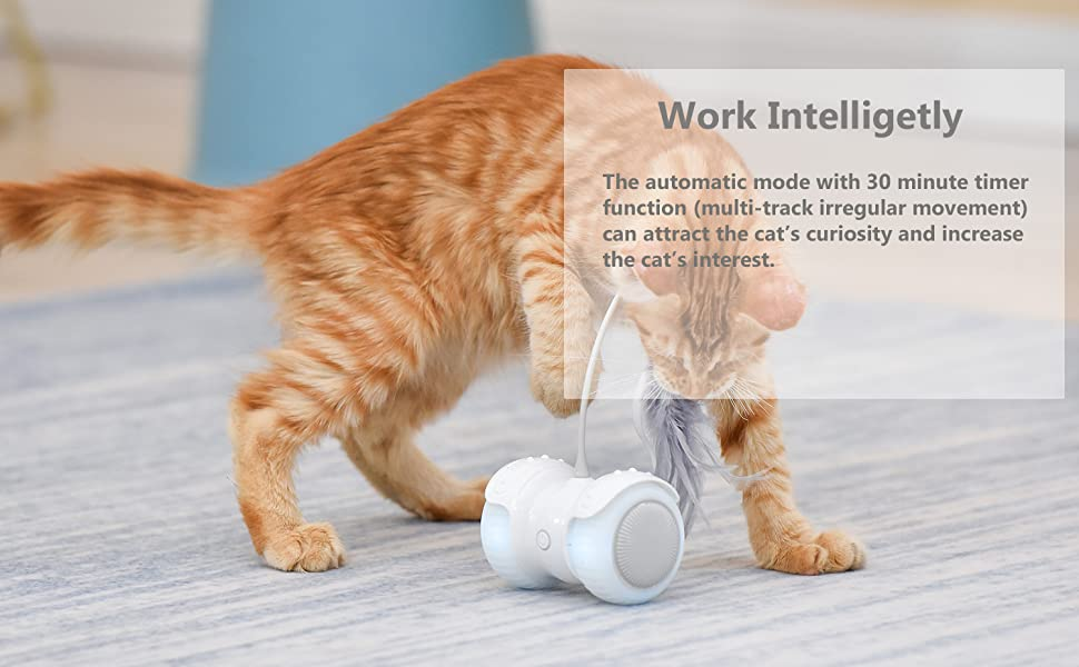 Work Intelligetly
