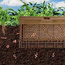 Worm flow between subpod and surrounding soil