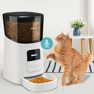 pet feeder for cats