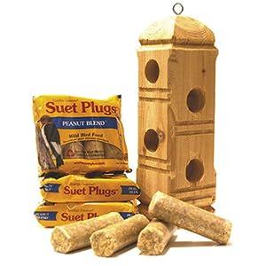 Suet plugs and suet plug feeder