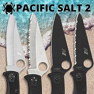 Pacific Salt 2