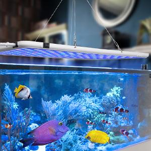 Bozily Aquarium Beleuchtung APP Steuerung LED Automatischem