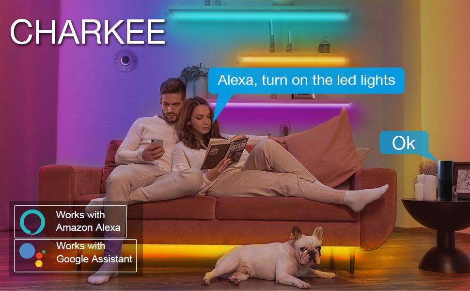 led lights with alexa