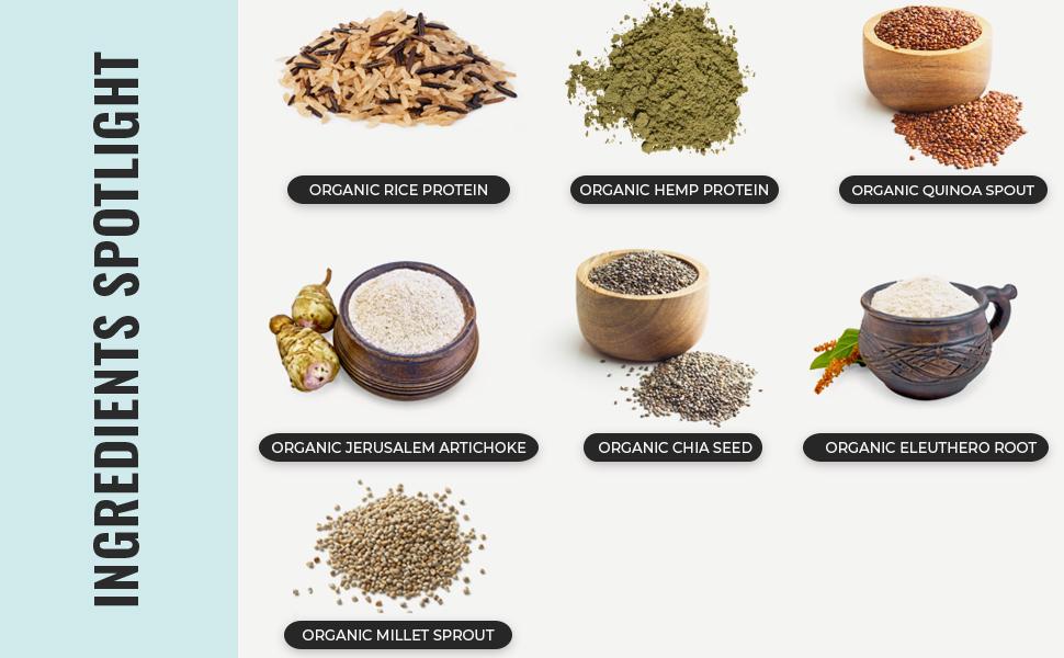 Organic Vegan Protein Ingredients