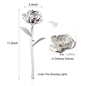 silver Dark white gold real flower dipped mom 10th present great festival anniversary single