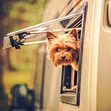 Monitor pets in RV's. Protect from overheating in RV's, mobile homes and tiny homes