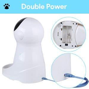 distribuidor do alimento de gato alimentador do animal de estimação alimentador automático dos alimentos para animais de estimação com temporizador