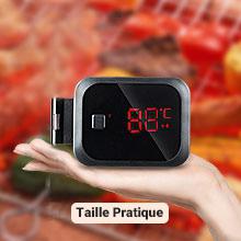 IBT-2X Thermometre Viande